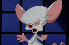 """The same thing we do every night, Pinky."" - Brain to Pinky"