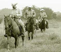 ❦ King Ranch