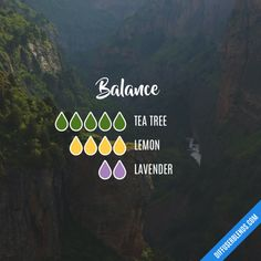Balance - Essential Oil Diffuser Blend
