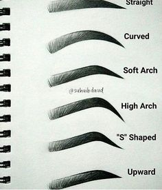 because i draw the same exact eyebrows all over my homeworj...i usually do the basic ones kinda in between soft and high arch