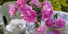 Peonies are the floral symbol of China, the state flower of Indiana, and the 12th wedding anniversary flower.  Photo via teleflora.com   - CountryLiving.com