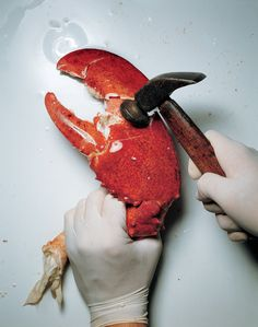 From the Archives: The Best of Irving Penn's Food Photography