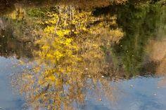 Reflet d'automne, Québec