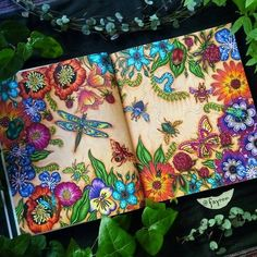 .•°´♡Gorgeous~!•*`*• --> If you're looking for the most popular coloring books and supplies including colored pencils, watercolors, gel pens and drawing markers, logon to http://ColoringToolkit.com. Color... Relax... Chill.
