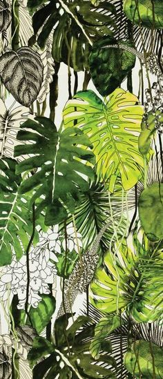 Ideia de misturar desenho, traço, rascunho com preenchimento e pintura Christian Lacroix fabric Monstera Botanical Art, Botanical Illustration, Illustration Art, Monstera Deliciosa, Tropical Art, Tropical Leaves, Tropical Prints, Motif Floral, Design Floral
