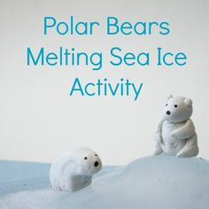 Polar Bear Activity : Teaching kids about the impact of rising global climate and melting sea ice on polar bears. A great STEM activity for kids. Science Activities For Kids, Animal Activities, Interactive Activities, Preschool Activities, Nature Activities, Preschool Learning, Learning Resources, Polar Bear Climate Change, Bears Preschool