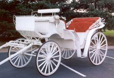 Horse and Carriage Rides http://www.johmarfarms.com/Horse_and_Carriage_Rides.html