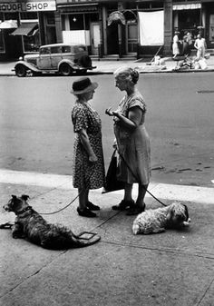 women with dogs, east end avenue, new york, 1950 • dan weiner