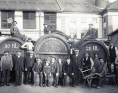 Pivo Vrchlabí