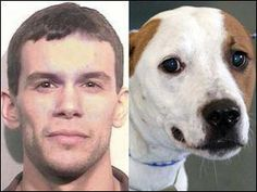 FROM OHIO ~~ARREST WARRANT ISSUED ~~ PLEASE SHARE Warrant issued for worker at pound An arrest warrant was issued Wednesday for the six-year kennel worker at the Lucas County Dog Warden who has been charged with cruelty to animals. Judge Robert Christiansen signed the warrant and set bond at 20,000.00 for Aaron A. Nova. During a probation violation hearing, the judge ordered that upon his arrest, Mr. Nova not be released because of jail overcrowding. (Full Details In Comments)