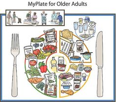 """""""Nutrition scientists at the Jean Mayer USDA Human Nutrition Research Center on Aging (USDA HNRCA) at Tufts University are introducing today the MyPlate for Older Adults which corresponds with MyPlate, the federal government's new food group symbol. Stevia, Calcium Deposits, Human Nutrition, Nutrition Education, Nutrition Poster, Nutrition Guide, Paleo, Bone Diseases"""