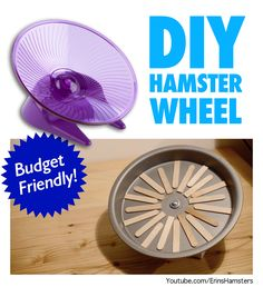DIY flying saucer wheel for hamsters, mice, gerbils, rats and other small rodents! https://www.youtube.com/watch?v=NbkhN_2S304