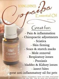 Young Living Essential Oils Copaiba uses  Copaiba is a powerful essential oil from South America that has traditionally been used to aid digestion and support the body's natural response to injury or irritation. Copaiba contains the highest amounts of beta caryophyllene (55 percent) of any known essential oil. http://yldist.com/a2z4health/