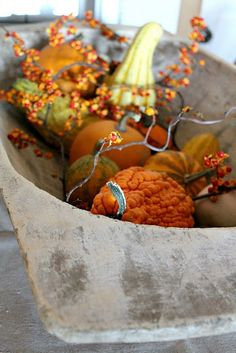 Pumpkins and gourds with bittersweet. This looks like fall. Fall is my favorite time of year!
