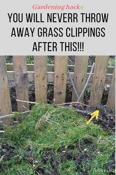 9 reasons Why You'll never throw away grass clippings! garden ideas, gardening ideas, gardening for beginners, gardening design, gardening tools, gardening hacks, gardening and landscape, gardens and gardening ideas #gardening #grassclippings #gardeningideas