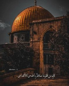 Blue Wallpaper Phone, Nature Iphone Wallpaper, Cute Cat Wallpaper, Black Wallpaper, Mecca Masjid, Palestine Art, English Love Quotes, Cute Couple Outfits, Mosque Architecture
