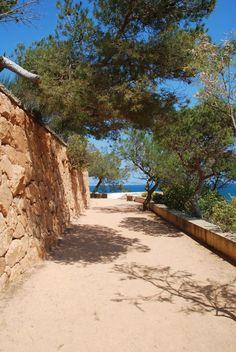 Sant Feliu de Gzixols,Camí de Ronda, de S' Agaro a Cala Sa Conca. Catalonia