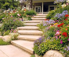 This Planting Guide Solves All of Your Sloped Garden Problems Steps convert a slope from inaccessible to inviting. Wide steps that meander or zigzag up a steep slope are easier to climb than those that escalate rapidly. Test Garden Tip: Begin building at Sloped Backyard Landscaping, Landscaping On A Hill, Sloped Yard, Landscaping Tips, Landscaping Software, Arizona Landscaping, Terraced Landscaping, Brick Steps, Door Steps