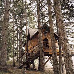 Tree House Garden Retreat