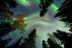 Aurora taken by JN Hall on September 12, 2014 in Fairbanks, AK, US. The photo was shared on spaceweather.com