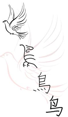 Evolution of the Chinese character for bird (niao 鸟)