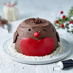 Lakeland Robin Microwave Chocolate Cake Kit is super easy & quick to make. The kit includes cake mix, icing, bowl & cutting template so you can make a cute robin cake. Christmas Cupcake Cake, Chocolate Christmas Cake, Christmas Birthday Cake, Chocolate Crafts, Christmas Cake Decorations, Xmas Cakes, Birthday Cakes, 2nd Birthday, Microwave Cake Mix