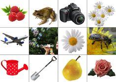 Шичида. Самые летние карточки для Memory. Часть II. Раздача - Babyblog.ru