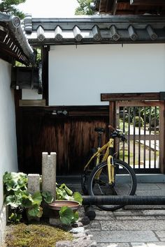 京都 妙心寺 東林院にて沙羅双樹の花とお抹茶を堪能。