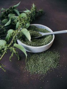 Nettle Recipes, Herb Recipes, Herbal Remedies, Natural Remedies, Elderberry Powder, Vegan Recipes Plant Based, Homemade Crackers, Natural Beauty Recipes, Weed Seeds