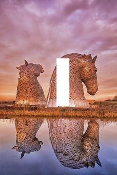 The Kelpies Scotland light switch plate wall art travel Home Decor gift USA Made #a624