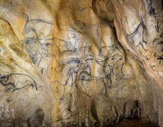 Grotte Chauvet - l'alcôve des lions