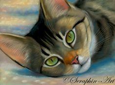 Katze Pastell Zeichnung