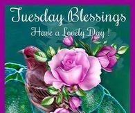 May Wonderful Things Unfold Before You Happy Tuesday Good Morning Flowers Pictures, Good Morning Picture, Morning Pictures, Flower Pictures, Pictures Images, Good Morning Facebook, Good Morning Tuesday, Happy Tuesday Pictures, Today Pictures