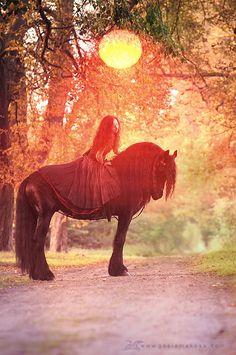 I look at this picture and get jealous im not on that horse with a big fluffy dress