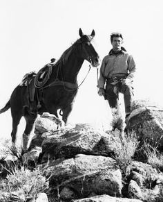 Pictures & Photos from Rawhide (TV Series 1959–1965) - IMDb