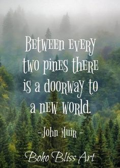 John Muir Quote: Between every two pines there is a doorway to a new world. New Quotes, Family Quotes, Funny Quotes, Life Quotes, Inspirational Quotes, Wall Art Quotes, Quote Wall, John Muir Quotes, Good Morning Funny