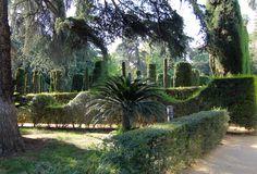 Seville Spain Gardens Alcazar