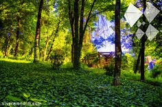 Mondim de Basto - Parque Florestal