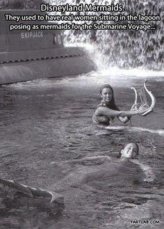 Disneyland Mermaids…
