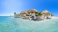 Sandals Royal Caribbean and Private Island All Inclusive Montego Bay Only Couples