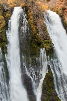 is this the 8th wonder of the world? McArthur-Burney Falls in Burney CA
