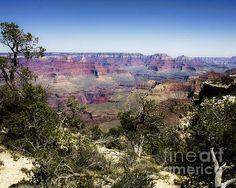 Grand Canyon, National Parks, United States, Wall Art, Artwork, Texas, Travel, Twitter, Naturaleza