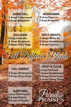 Essential Oil Diffuser Blends for Autumn and Fall. Crisp, clean and woodsy smelling! Essential Oil Blends, Young Living Essential Oils, Doterra Essential Oils, Off The Grid, Essentials, Diy Crafts, Fall Harvest, Decor, Incense