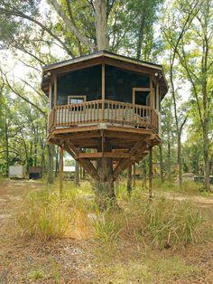 16 Ideas De Alojamientos En Arboles Cabañas Cabaña Arbol Casa Del Arbol