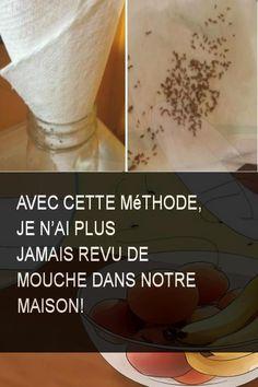 Avec cette méthode, je n'ai plus jamais revu de mouche dans notre maison!