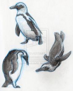 http://fc04.deviantart.net/fs49/i/2009/226/8/e/Penguin_Sketches_by_justsomedude86.jpg