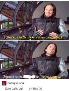 lol Sam and Bucky