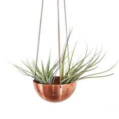 copper air plant hanging basket. <3