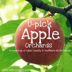 U-Pick Apple Orchards in Lake County {2014}