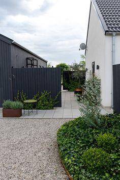 Small Gardens, Outdoor Gardens, Little Lime Hydrangea, Summer House Garden, Balcony Plants, Garden Seating, Outdoor Living, Outdoor Decor, Outdoor Landscaping